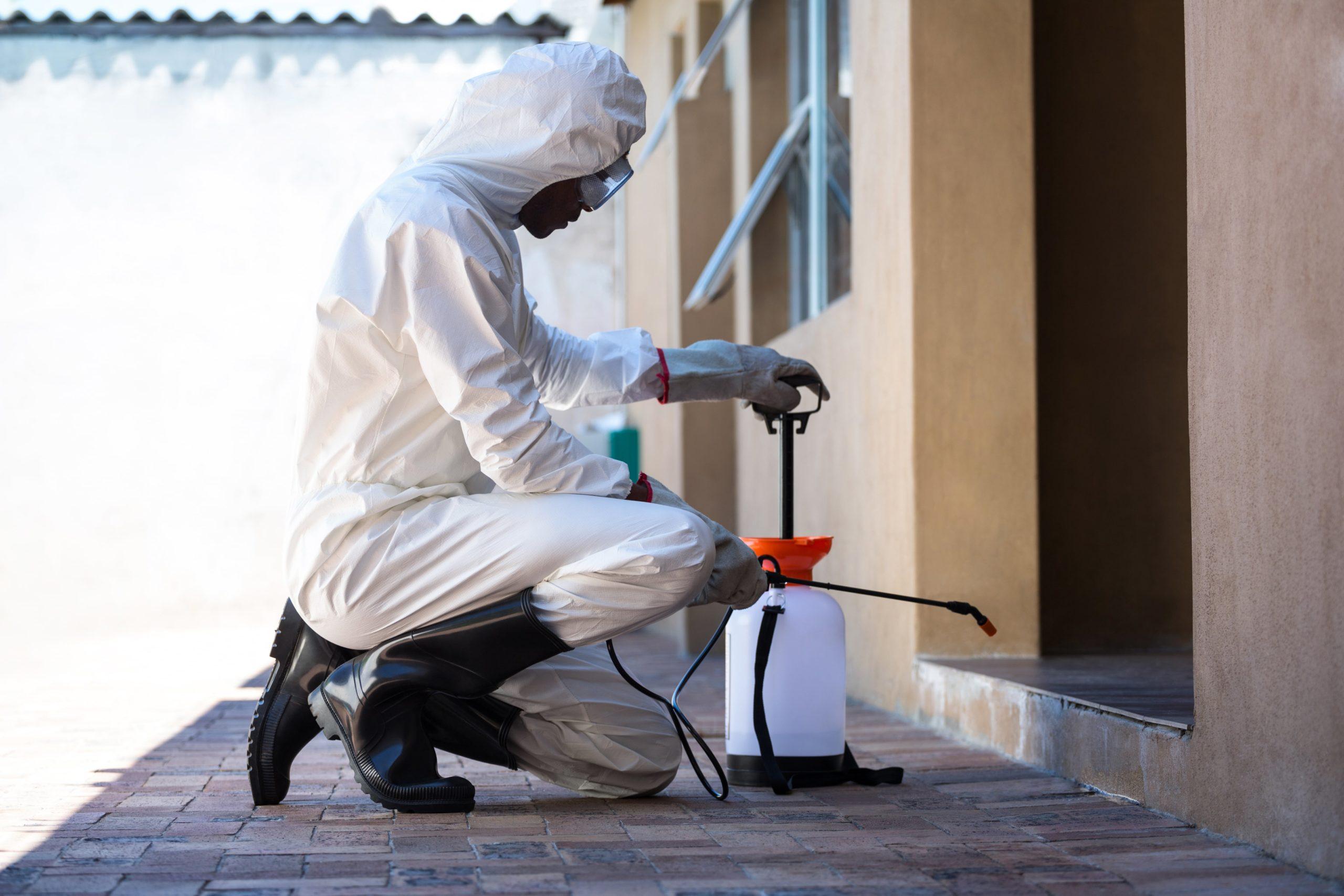 ¿Qué Puede Exigir El Cliente A Un Servicio De Control De Plagas Para Empresas?